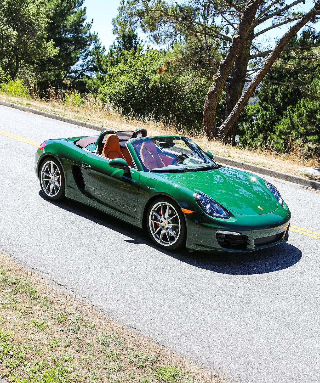 British Racing Green Porsche Colors